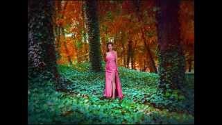 Irena Jarocka - By coś zostało z tych dni ( cover by Urszula Lidwin)