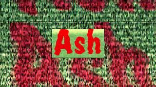 Firty Ash Logo Sparta Madhouse Remix