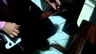 Edson Bruno Lap Steel Guitar