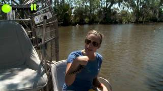 New Orleans Louisiana Airboat Tours