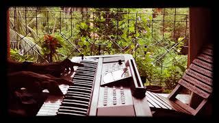 Titanic(My heart will go on) Piano Cover on Roland e09