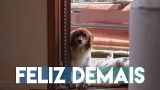 TE AMAR ME FAZ FELIZ DEMAIS - OQMV(Cover) ft. Walace Fonseca