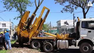 Trasplante mecánico de árboles en el F