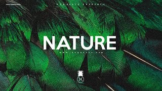 """Nature"" - Dancehall x Afrobeat x Wizkid Type Beat Instrumental"