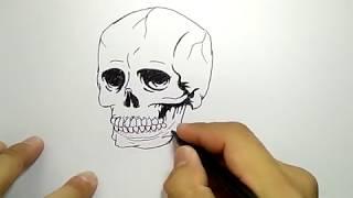 cara menggambar tengkorak / how to draw skull