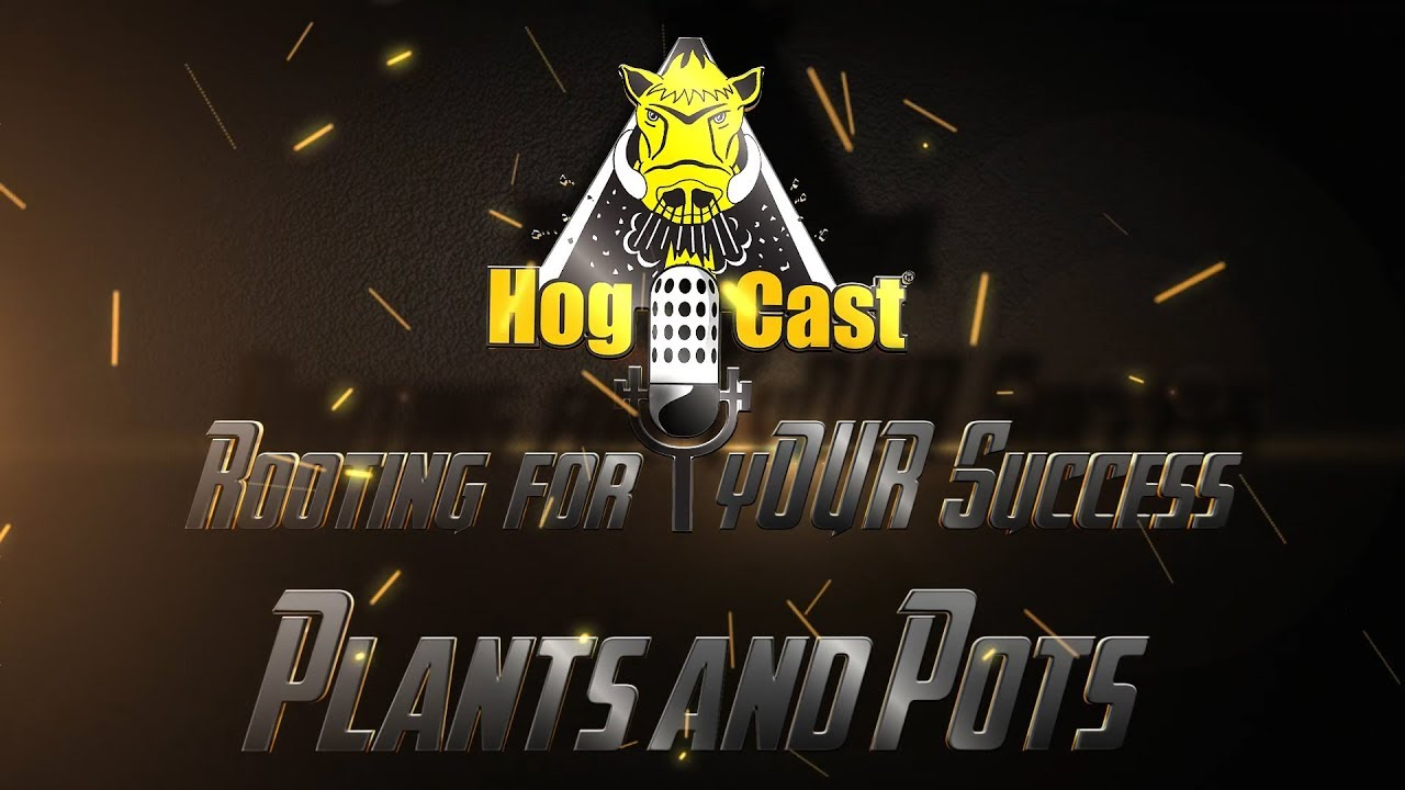 Hog Cast - Plants and Pots
