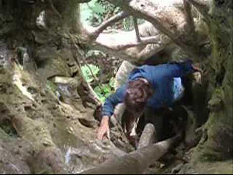 Central America 2008 video 7