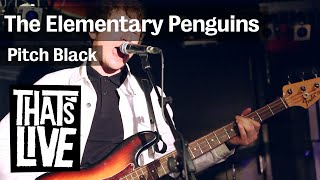 The Elementary Penguins - Pitch Black ( live @ BNN That's Live - 3FM )