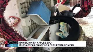 Nueva exhibición en Naples Zoo