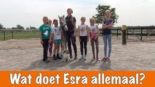 Day in the life van Esra   PaardenpraatTV