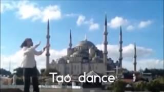 Internal Flight - Tao Dance by Orpheus B