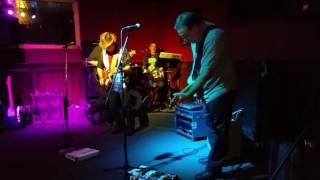 Tamsen Donner Blues Band Live At Wisegirl 1/21/2017