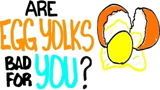 Are Egg Yolks Bad For You? - What You've Heard Might Not Be True