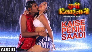 FULL AUDIO - KAISE PENHI SAADI | New Bhojpuri Movie Audio Song 2017 | RANI DILBARJAANI | width=