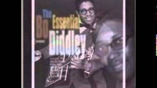 Bo Diddley - You Can't Judge A Book By The Cover