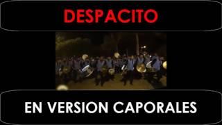 despacito la nueva revolucion andina caporales