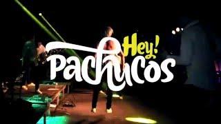 PACHUCOS 2016 SHOW!
