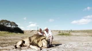 """Mataron a león, se tomaron foto y apareció otro para """"vengarse"""""""