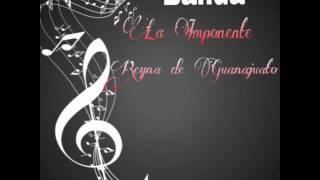 Banda La Imponente Reyna de Guanajuato-El Guateque