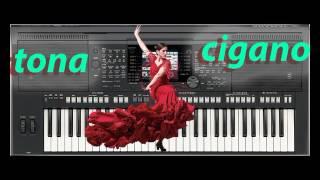 Musicas Ciganas 2017 TONA CIGANO «2»
