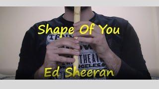 Shape Of You - Ed Sheeran con Flauta Dulce (notas)