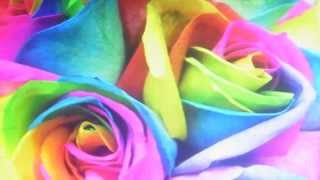 LOGUE and McCOOL 'RAINBOWS and ROSES'1991 (a Vern Gosdin song)