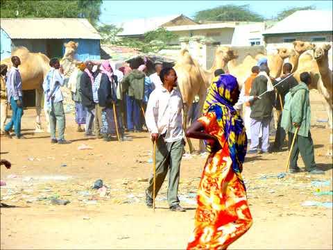 Somalia 2011-100 HD