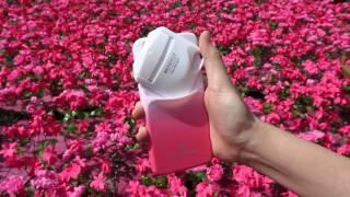 Perphone® Pink