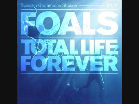 foals-what-remains-vitilo