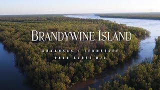 Brandywine Island |  Crittenden County AR | 2300 width=