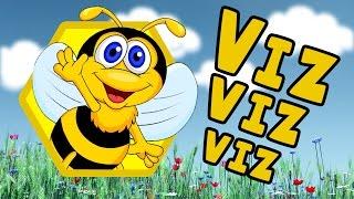 ARI VIZ VIZ VIZ | Sweet Tuti Bebek Şarkıları | Çizgi Film Çocuk Şarkıları | Ninni