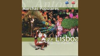 Lisboa dos Manjericos