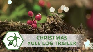 Cannabis Christmas Yule Log Trailer | Green Bee Life
