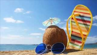 Sclifos Orchestra - Summertime
