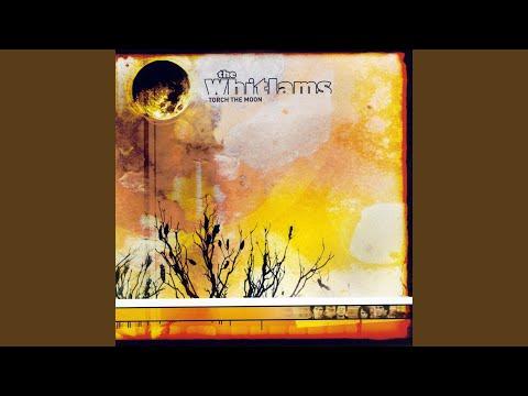Tourch The Moon de The Whitlams Letra y Video