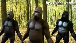 Funny gorilla dance on\come on come on turn radio on