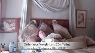 Lose Weight While You Sleep!
