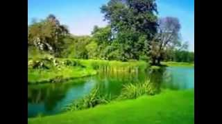 Green Green Grass Of Home   Tom Jones   Englebert Humperdink  with lyrics