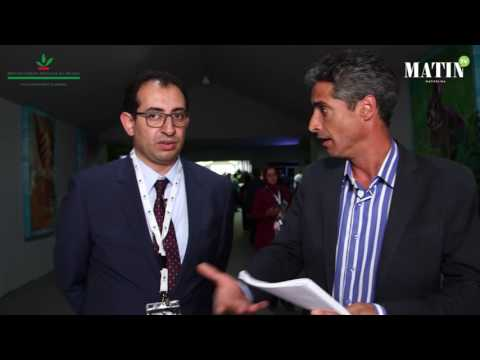 La rose à parfum : La production marocaine a atteint 2.000 T de pétale par an