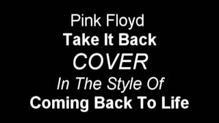 Pink Floyd Take It Back - IN THE STYLE OF - Coming Back To Life