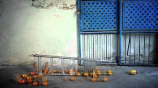 Pomaranče so zvite!