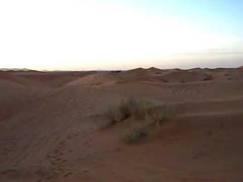 Caravana en desierto de Merzouga. Marruecos.