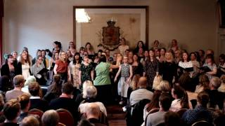 Royals (Lorde) - Smålands Nations Damkör Linnea