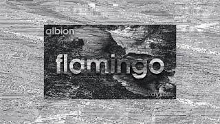 Albion - Flamingo ft. Rauf Qarayev