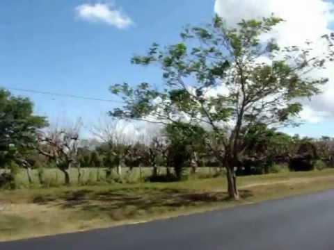 Nicaragua Trip.wmv