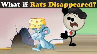 What if Rats Disappeared? + more videos | #aumsum #kids #science #education #children