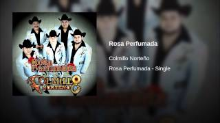 Rosa Perfumada