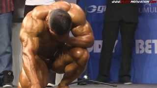 Bodybuilding Motivation   The Gym Is My Everything