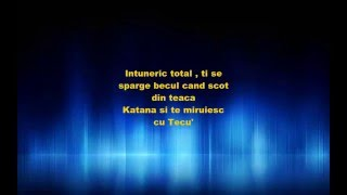 Codrin Bradea: -Cuvinte- Lyrics (versuri)