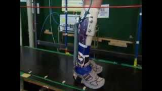"Ghent University exoskeleton ""WALL-X"", supplementary video with AMAM poster"